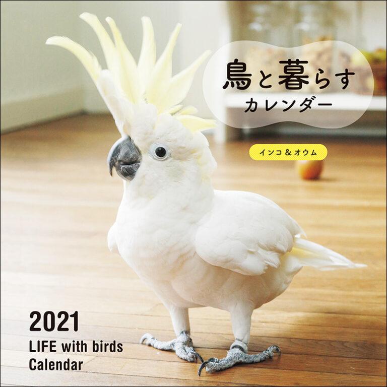 2021年 大判カレンダー 鳥と暮らすカレンダー インコ&オウム | 株式 ...